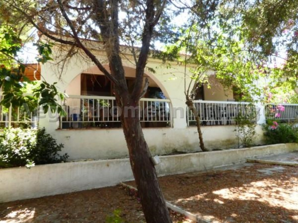 Detached house in large garden(1038 sq m ) - Property Aegina