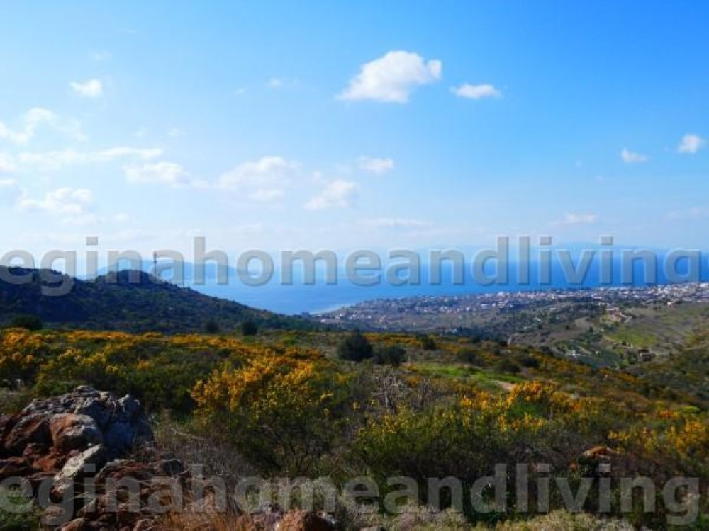Beautiful land plot with panoramic sea view - Property Aegina