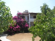 House in Agistri - Aegina Home and Living