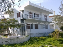 House in Agious (3 apartments in 1 building) - Aegina Home and Living